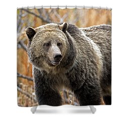 Snow's Mama Bear Shower Curtain