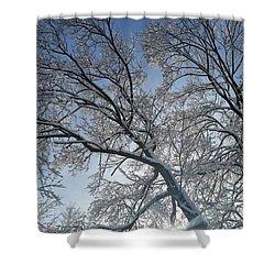 Snowshine Shower Curtain