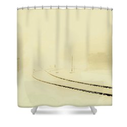 Snowstorm In The Yard S Shower Curtain