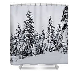 Shower Curtain featuring the photograph Snowy-1 by Okan YILMAZ