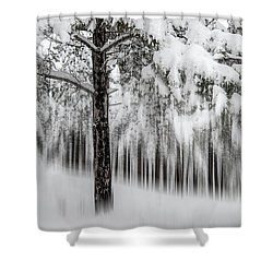 Shower Curtain featuring the photograph Snowy-2 by Okan YILMAZ
