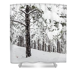 Shower Curtain featuring the photograph Snowy-4 by Okan YILMAZ