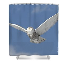 Snowy Angel Shower Curtain