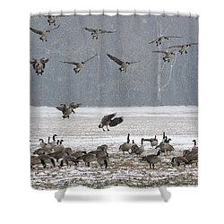 Snowy Approach Shower Curtain