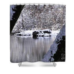 Snowy Bear River Shower Curtain