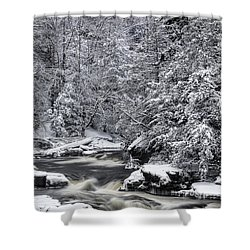 Snowy Blackwater Shower Curtain
