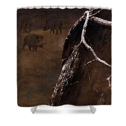 Snowy Branch With Wild Boars Shower Curtain