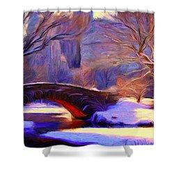 Snowy Central Park Shower Curtain