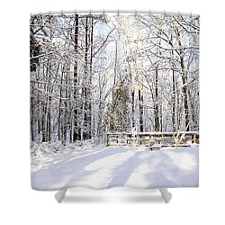 Snowy Chicken Coop Shower Curtain