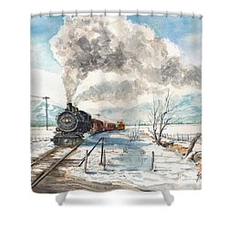 Snowy Crossing Shower Curtain