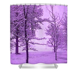 Shower Curtain featuring the photograph Snowy Day In Purple by Michelle Audas