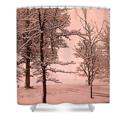 Shower Curtain featuring the photograph Snowy Day In Rose by Michelle Audas