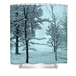 Shower Curtain featuring the photograph Snowy Day by Michelle Audas