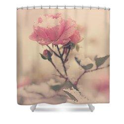 Snowy Day Of Roses Shower Curtain