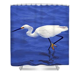 Shower Curtain featuring the photograph Snowy Egret 1 by Bill Holkham