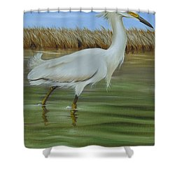 Shower Curtain featuring the painting Snowy Egret 1 by Phyllis Beiser