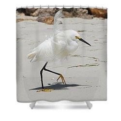 Snowy Egret 6429 Windy Shower Curtain