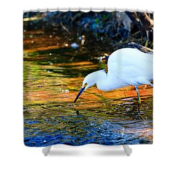 Snowy Egret Hunting 2 Shower Curtain