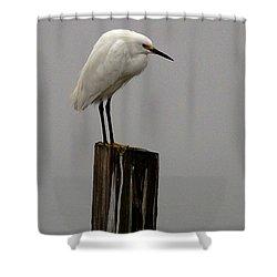 Snowy Egret In The Fog  Shower Curtain