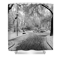 Snowy Entrance To The Park Shower Curtain by Rae Tucker