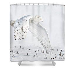 Snowy Flight Shower Curtain