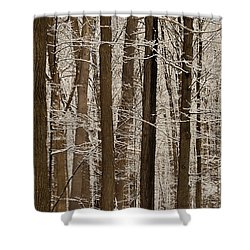 Snowy Forest Elevation Shower Curtain