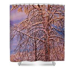 Snowy Shower Curtain
