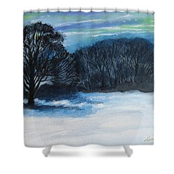 Snowy Moonlight Night Shower Curtain