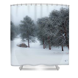 Snowy Morning - 0622 Shower Curtain