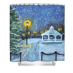 Snowy Night On The Waltham Common Shower Curtain