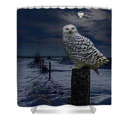 Snowy Owl On A Winter Night Shower Curtain
