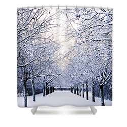 Snowy Pathway Shower Curtain by Marius Sipa