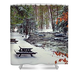 Snowy Picnic Shower Curtain