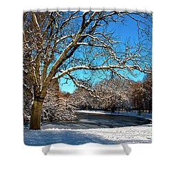 Snowy Pond Shower Curtain