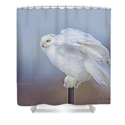 Snowy Portrait Shower Curtain