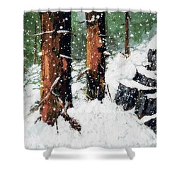 Snowy Redwood Dream Shower Curtain
