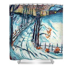 Snowy Road Shower Curtain by Carolyn Donnell