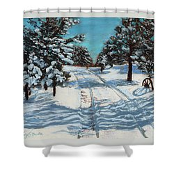 Snowy Road Home Shower Curtain