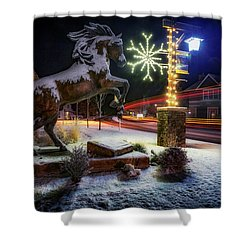 Shower Curtain featuring the photograph Snowy Sisters by Cat Connor