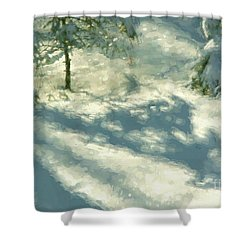 Shower Curtain featuring the photograph Snowy Spruce Shadows by Clare VanderVeen