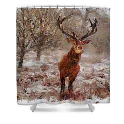 Snowy Stag Shower Curtain