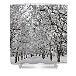 Snowy Treeline Shower Curtain