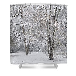 Snowy Winter Forest Shower Curtain