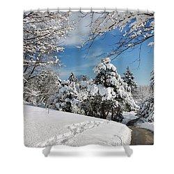 Snowy Wonderland  Shower Curtain by Elaine Manley