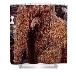 Snuffleupagus Shower Curtain