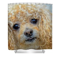 Snuggles Shower Curtain by Steven Richardson