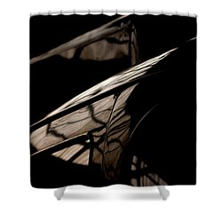 Shower Curtain featuring the photograph So Beautiful by Paul Job