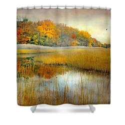 So Long Shower Curtain by Diana Angstadt