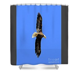 Soar Into The Blue II Shower Curtain