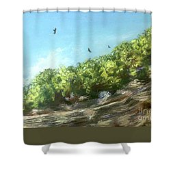 Soaring Above The North Rim Shower Curtain